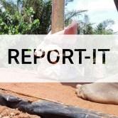 report-it